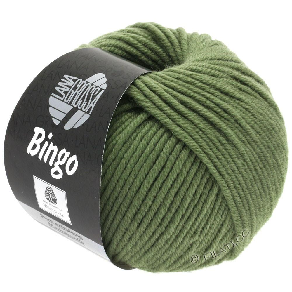 Lana Grossa BINGO  Uni/Melange | 180-Resedagrün
