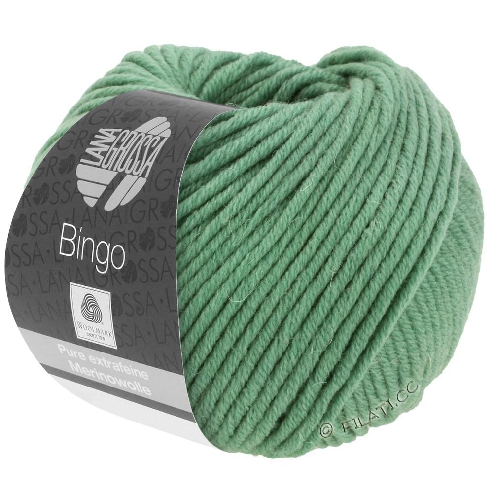 Lana Grossa BINGO  Uni/Melange | 196-Graugrün