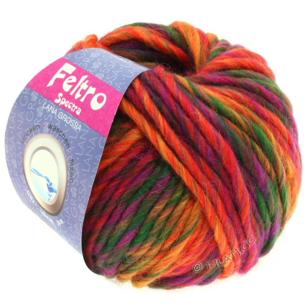Lana Grossa FELTRO Spectra | 805-Rot/Orange/Violett/Flaschengrün