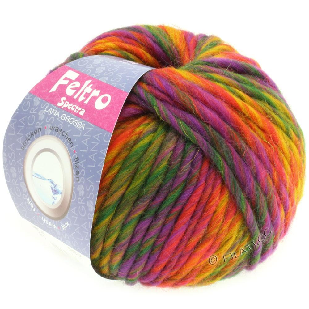 Lana Grossa FELTRO Spectra | 815-Gelb/Orange/Rot/Violett/Grün