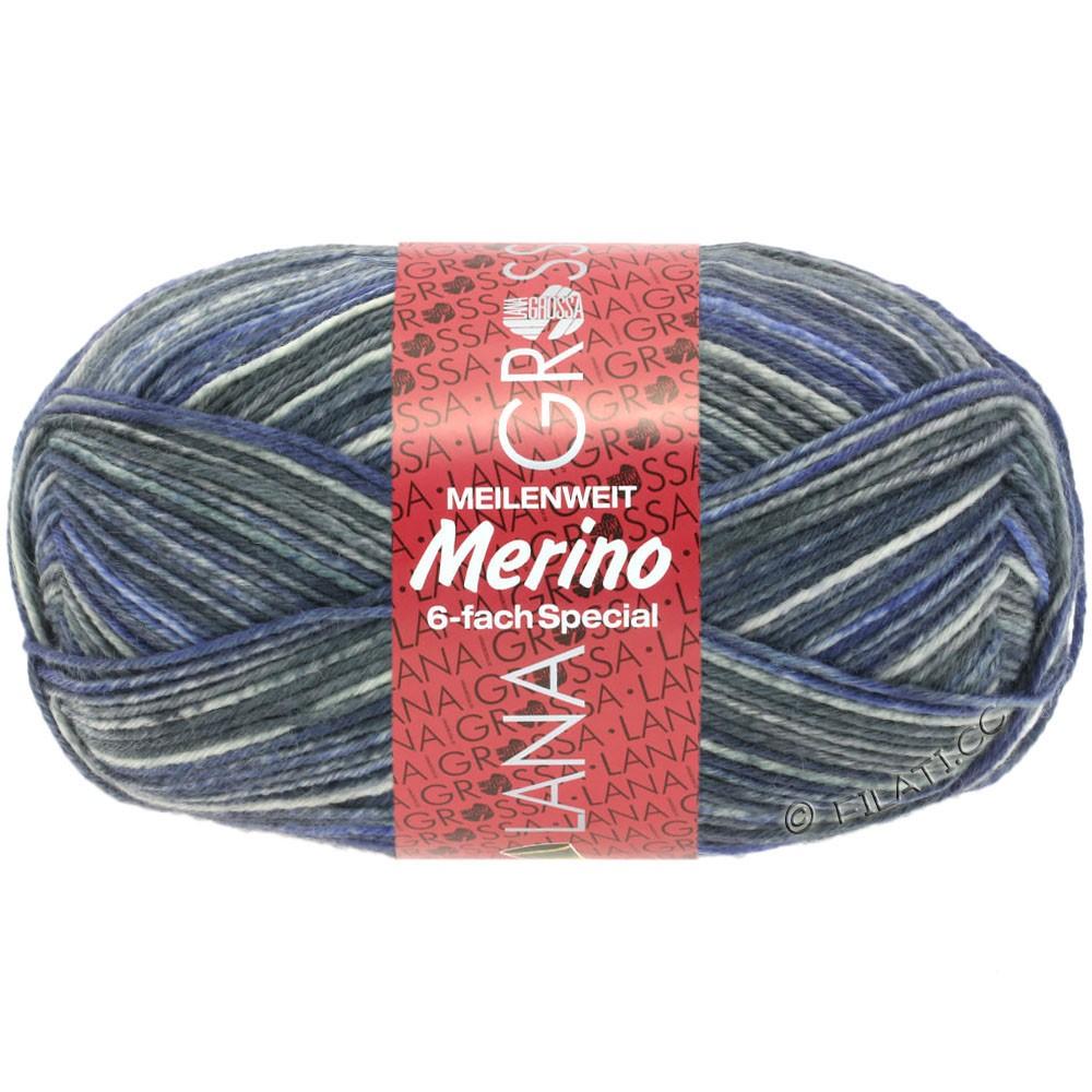 Lana Grossa MEILENWEIT 6-FACH 150g Merino Print | 0506-
