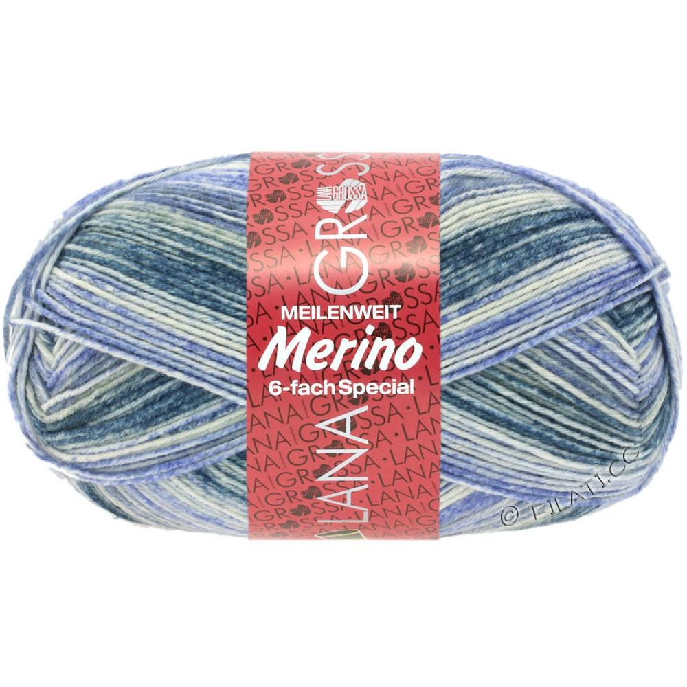Lana Grossa MEILENWEIT 6-FACH 150g Merino Print | 0513-