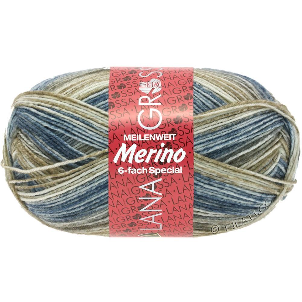 Lana Grossa MEILENWEIT 6-FACH 150g Merino Print | 0514-