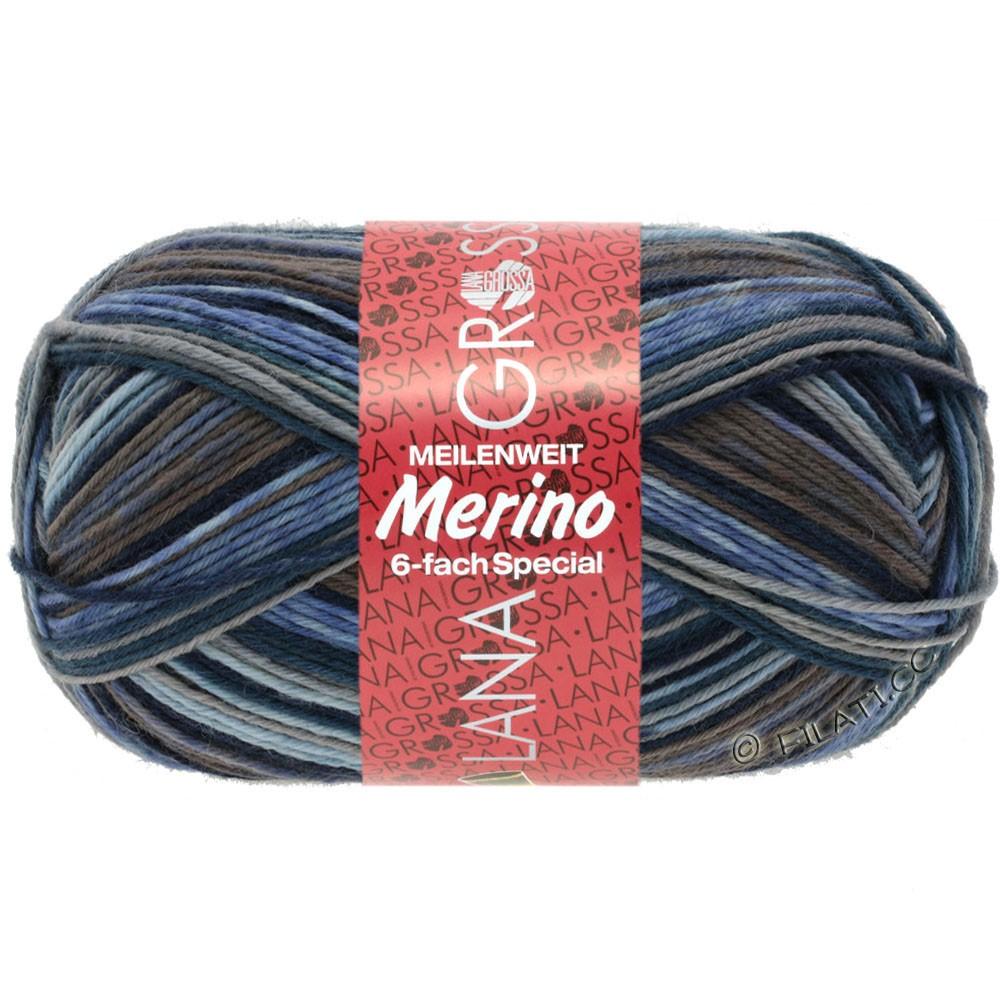 Lana Grossa MEILENWEIT 6-FACH 150g Merino Print | 0522-