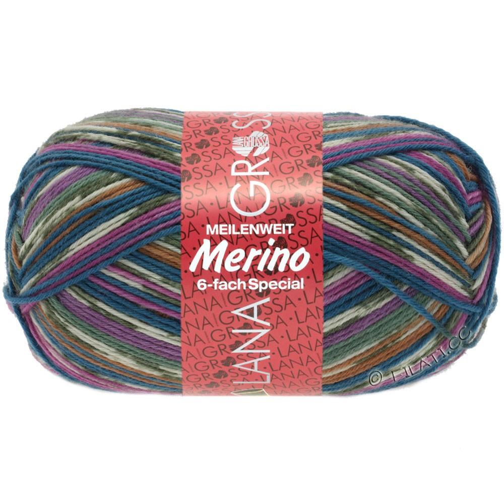 Lana Grossa MEILENWEIT 6-FACH 150g Merino Print | 0527-