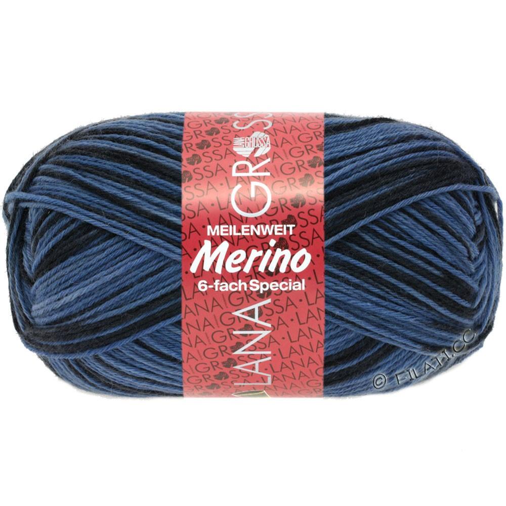 Lana Grossa MEILENWEIT 6-FACH 150g Merino Print | 529-