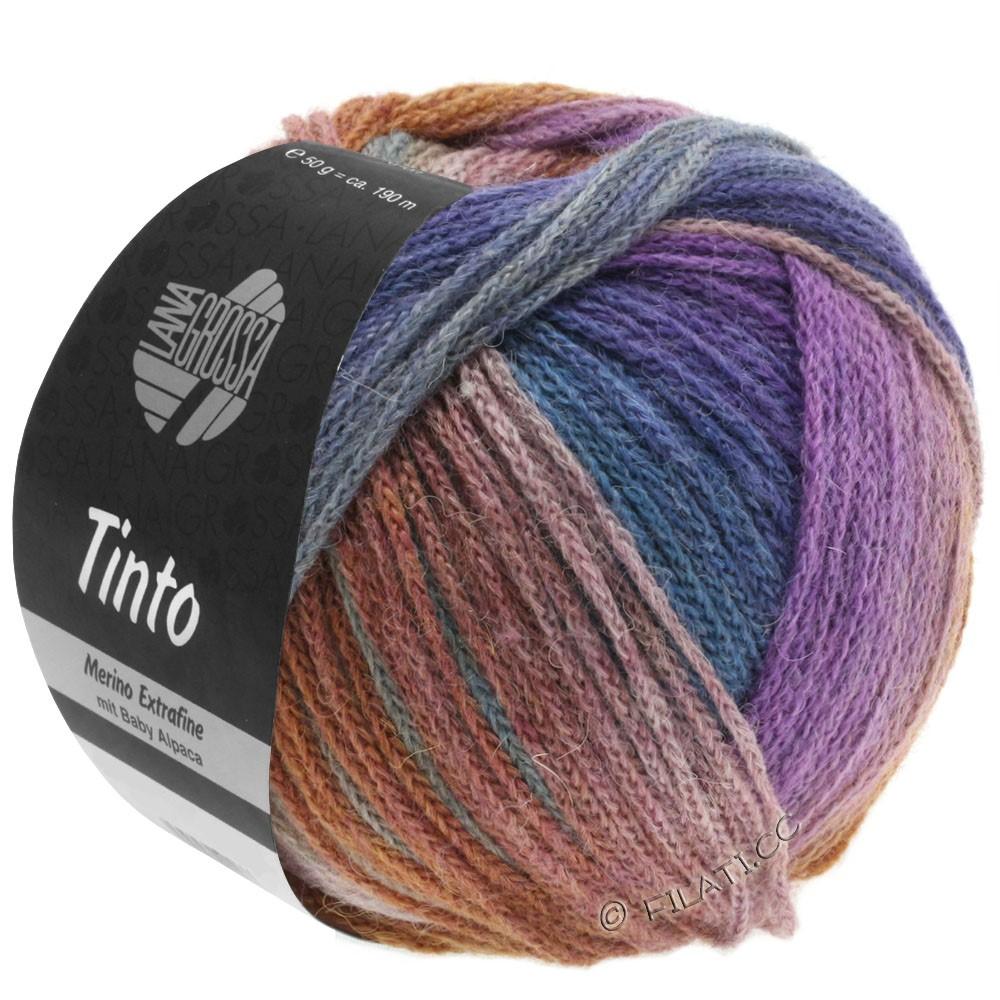 Lana Grossa TINTO | 09-Hellgrau/Resedagrün/Lila/Braun/Petrolblau